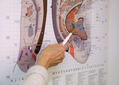 auriculopuncture geneve