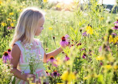 z allergies pollen geneve